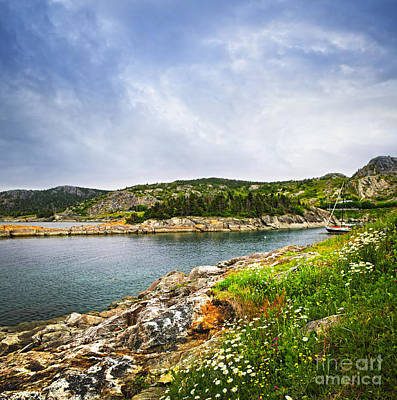 Overcast Photograph - Atlantic Coast In Newfoundland by Elena Elisseeva