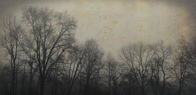 Photograph - Bare Branches by JAMART Photography