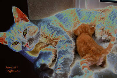Kitty Digital Art - Cat Maternity by Augusta Stylianou