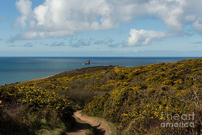 Cornish Seascape St Agnes  Art Print by Brian Roscorla