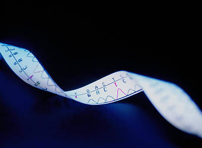 Heredity Photograph - Genetic Sequence by Lawrence Lawry
