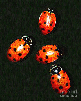 Ladybug Digital Art - 4 Ladybugs by Wingsdomain Art and Photography