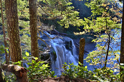 Photograph - Lower Falls by Ansel Price