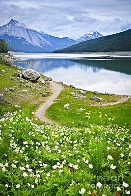 Mountain Lake In Jasper National Park Print by Elena Elisseeva