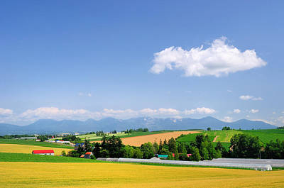 Y120817 Photograph - Summer In Hokkaido by Frank Chen