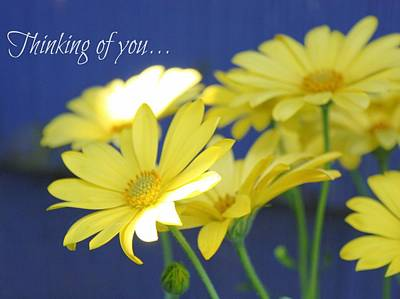 Thinking Of You... Art Print by Cathie Tyler