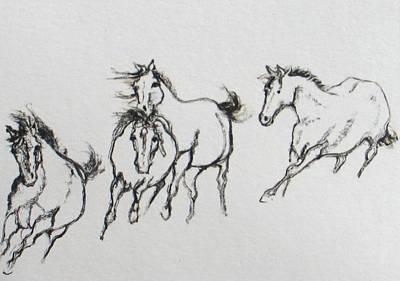 Painting - 4 Wild Horses  by Elizabeth Parashis