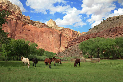 Capitol Reef National Park Art Print by Southern Utah  Photography