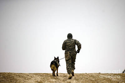 A Dog Handler And His Military Working Art Print