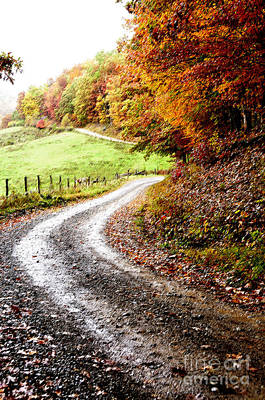 Country Lanes Digital Art - Autumn Country Road by Thomas R Fletcher