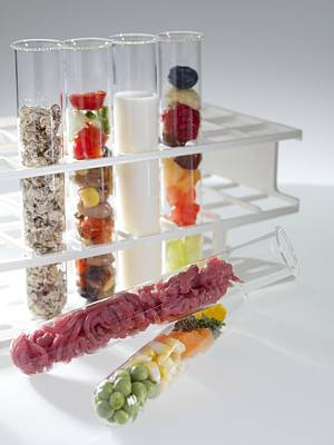 Balanced Diet Art Print by Tek Image