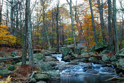 Photograph - Big Hunting Creek Upstream From Cunningham Falls by Mark Dodd