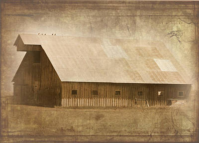 Photograph - 5 Birds On A Barn by Cindy Wright