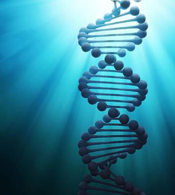Dna Art Digital Art - Dna Molecule, Artwork by Andrzej Wojcicki