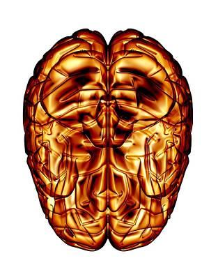 Bird Brain Photograph - Human Brain, Artwork by Pasieka