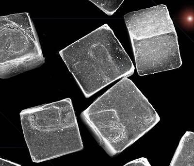 Sem Digital Art - 5 Salt Crystals M by Sheri  Neva