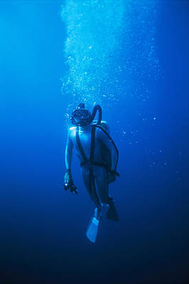 Underwater Breathing Photograph - Scuba Diver by Alexis Rosenfeld