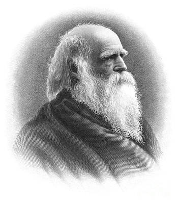William Cullen Bryant Art Print by Granger