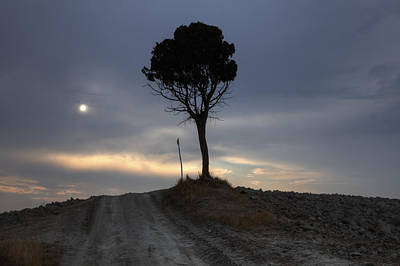 Dirt Roads Photograph - Tuscany by Joana Kruse