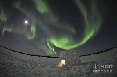 Aurora Borealis Over An Igloo On Walsh Art Print by Jiri Hermann