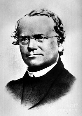 Gregor Mendel, Father Of Genetics Art Print by Science Source