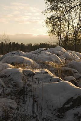 Christmas Christopher And Amanda Elwell - Landscape by Igor Sinitsyn