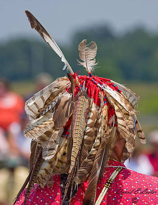 Photograph - Native American by David Lester