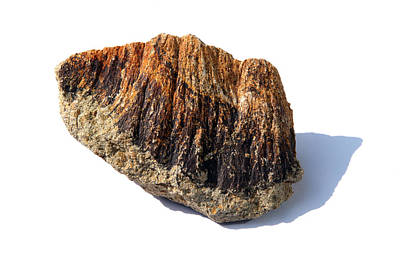 Rock From Meteorite Impact Crater Art Print by Detlev Van Ravenswaay
