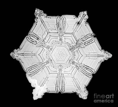 Snowflake Art Print by Science Source