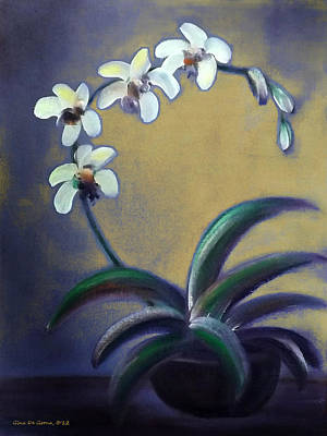 Painting - White Orchids by Gina De Gorna