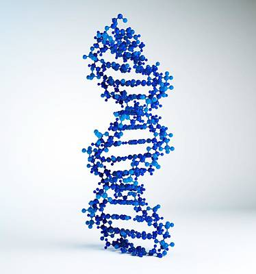 Dna Molecule, Artwork Art Print