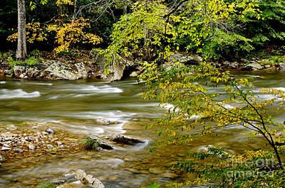 Fall Along Williams River Art Print by Thomas R Fletcher