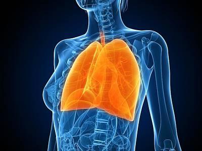 Healthy Lungs, Artwork Art Print by Sciepro