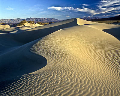 Photograph - Sand Dune Death Valley by Joe  Palermo