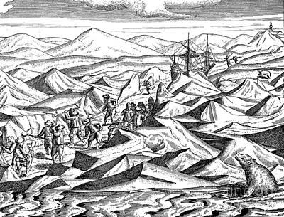 Veer Photograph - Willem Barents (c1550-1597) by Granger