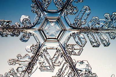Photograph - Snowflake by Ted Kinsman