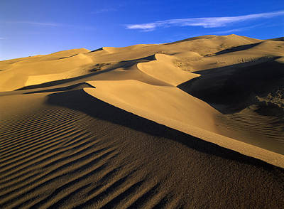 Photograph - 750 Foot Tall Sand Dunes Tallest by Tim Fitzharris