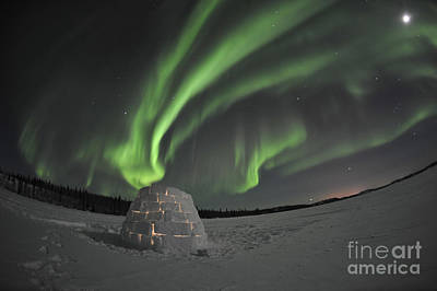 Igloo Photograph - Aurora Borealis Over An Igloo On Walsh by Jiri Hermann