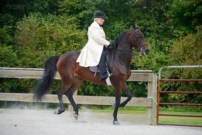 Pa Morgan Horse Club Photograph - Class 31  Open Saddle Seat Pleasure  by Mark Dodd