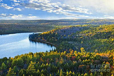 Canada Photograph - Fall Forest And Lake by Elena Elisseeva