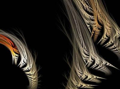 Ferns Art Print by Michele Caporaso