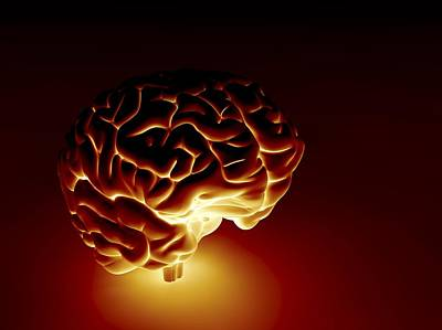 Human Brain, Artwork Art Print by Pasieka