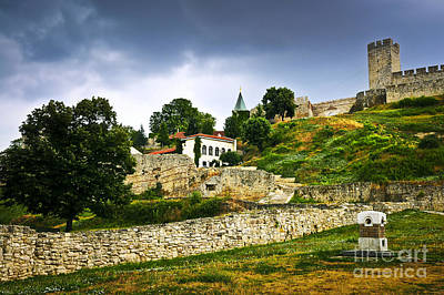 Kalemegdan Fortress In Belgrade Art Print by Elena Elisseeva