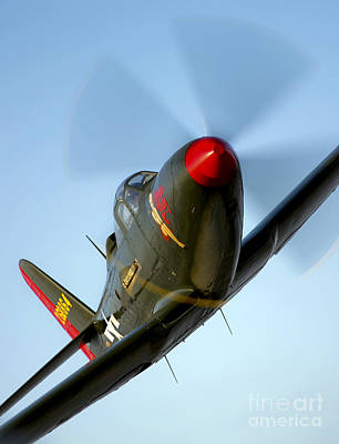 Photograph - A Bell P-63 Kingcobra In Flight by Scott Germain