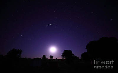 A Bolide From The Geminids Meteor Art Print by Luis Argerich