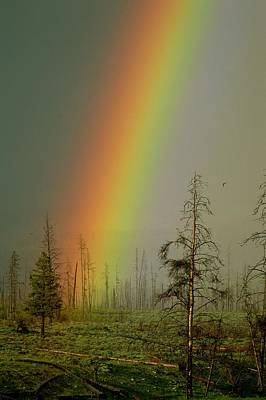 A Brilliantly Colored Rainbow Ends Art Print by Norbert Rosing