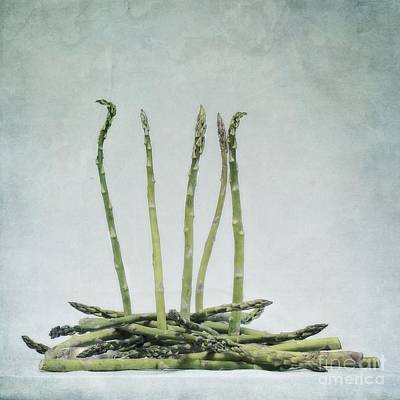 Asparagus Photograph - A Bunch Of Asparagus by Priska Wettstein