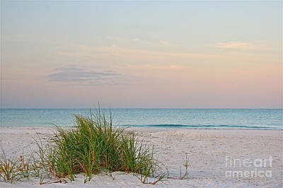 Photograph - A Calm  Evening View by Joan McArthur