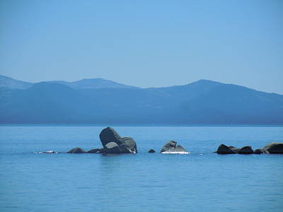 Photograph - A Calm Tahoe by Dan Whittemore