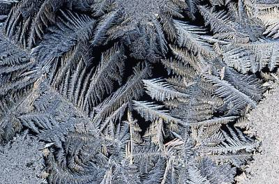 A Close View Of Frost Crystals Art Print